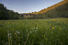 Meadow and viaduct bridge Royalty Free Stock Images