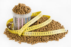 Measured dose of food for dog Stock Photo