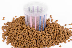 Measured dose of food for dog Royalty Free Stock Photos