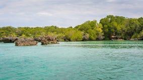 Meerblick und Mangroven Sansibar Lizenzfreies Stockfoto
