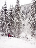 Men in the woods in winter. Royalty Free Stock Images