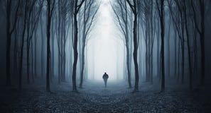 Mens die in een fairytalke donker bos loopt met mist Royalty-vrije Stock Afbeelding
