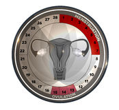 Menstrual cycle calendar reproductive system Stock Image