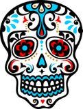 Mexicansk skalle Royaltyfri Fotografi