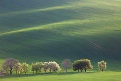 Minimalism Amazing Landscape for seasonal background or wallpape Royalty Free Stock Photography