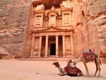 Ministero del Tesoro e cammelli di PETRA Immagini Stock Libere da Diritti