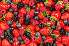Mixed berry fruits Stock Photography