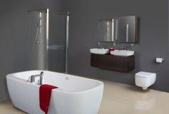 Moderne Grijze Badkamers Stock Afbeeldingen