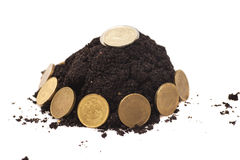 Money growth.Coins growing from soil Royalty Free Stock Image