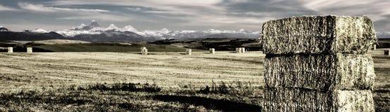 Montana Mountains and Farm Royalty Free Stock Photos