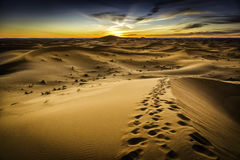 Morocco Desert Stock Images