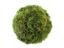 Moss sphere Royalty Free Stock Photography