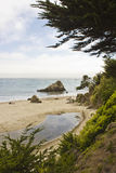 Muir Beach, northwest of San Francisco Royalty Free Stock Images