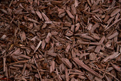 Mulch Brown Decorative Bark Stock Images