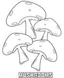 Mushrooms coloring page Stock Image