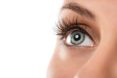 Natural female eye Royalty Free Stock Images