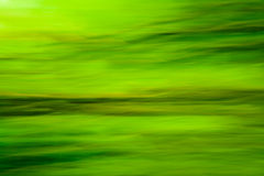 Nature green blur Stock Image