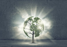 Nature protection Stock Images