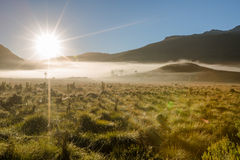 Nebbia mistica di mattina Fotografia Stock Libera da Diritti