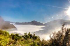 Nebbia surreale di mattina Fotografie Stock Libere da Diritti