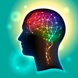 Neuronen in de hersenen Stock Foto