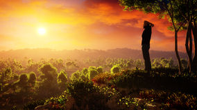 A New Day Of Hope Rises Stock Image