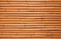 New shining bamboo wall background texture Stock Images
