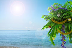 New Year palm tree with decoration concept holiday background Stock Images