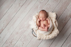 Newborn Baby Sleeping in a Wire Basket Royalty Free Stock Photo