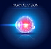 Normal eye vision blue background Stock Image