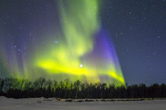 Northern Lights (Aurora borealis) over snowscape. Royalty Free Stock Photo