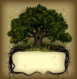 Oak tree wih a banner Royalty Free Stock Images