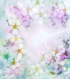 Oil painting white sakura, cherry blossom flowers in soft color and blur style for background Stock Photography