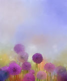 Oil painting,Pastel colors light purple onion flower in the meadows Stock Image