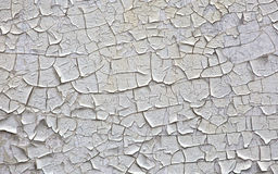 Old paint Royalty Free Stock Photos