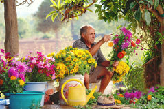 Old Spanish farmer making  country flower arrangements Stock Photos