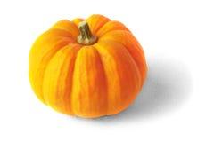 Orange pumpkin Royalty Free Stock Image
