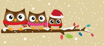 Owl family on the branch christmas banner Stock Photos