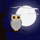 Owl at night Royalty Free Stock Photo