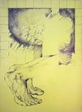 Pés masculinos anathomy Foto de Stock
