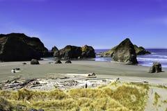 Pacific northwest coastline Royalty Free Stock Image