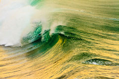 Pacific Ocean Wave at Sunrise Royalty Free Stock Photo