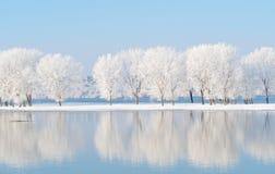 Paesaggio di inverno con la riflessione nell'acqua Immagini Stock Libere da Diritti