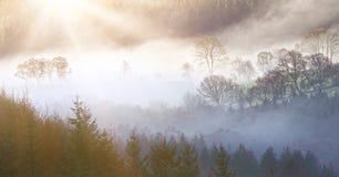 Paesaggio di mattina Fotografia Stock Libera da Diritti