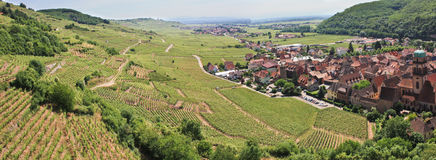 Panorama of a vineyard and a village in France Stock Images