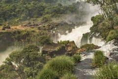 Parque de Iguazu desde arriba de las cascadas Imagen de archivo