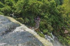 Parque de Iguazu desde arriba de las cascadas Fotografía de archivo