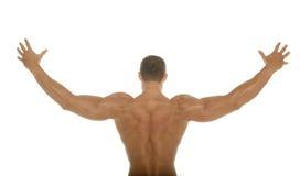 Parte posteriore atletica muscolare del costruttore di corpo Fotografie Stock Libere da Diritti