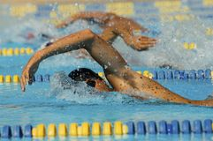 Participants In Swimming Race Stock Images