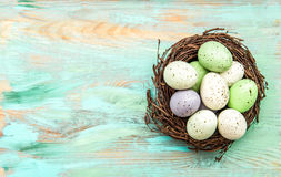 Pastel colored easter eggs in nest on wooden background Royalty Free Stock Images